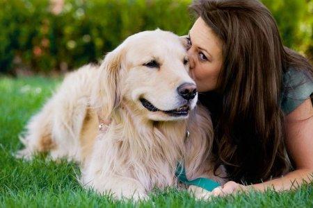 Пять животных, которые способны лечить людей от болезней