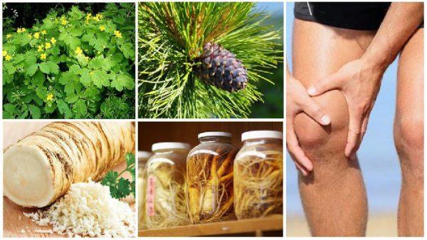 Лечение суставов народными средствами в домашних условиях.