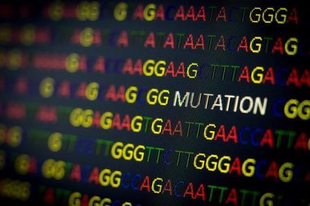 Мутация в одном гене защищает человечество от диабета