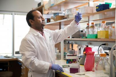 Ученые «перепрограммировали» врожденный иммунитет для борьбы с раком поджелудочной железы