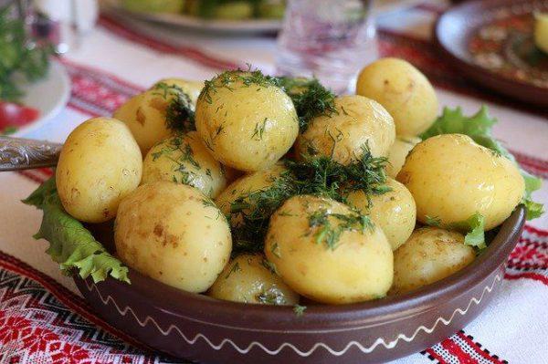 Свежая картошка с укропом фото.