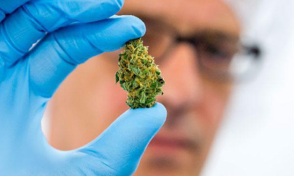 Нарколог на дом при передозировке марихуаной.